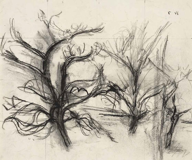 Tree Study drawing by Martin Bloch
