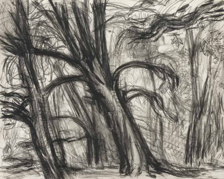 Trees 1947 drawing by Martin Bloch